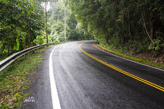 Извилистая дорога с природой Стоковые Изображения