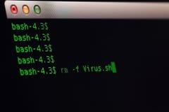 Извлеките файл вируса на OS Unix Стоковые Фотографии RF