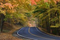 изгибает дорогу листва Стоковые Изображения RF