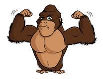 Изгибать гориллы бесплатная иллюстрация