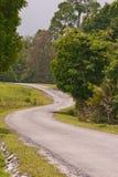 изгибать дорогу Стоковое Изображение RF