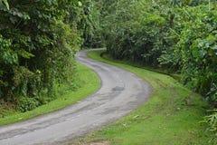 Изгибать дорогу на сельской местности Стоковые Изображения RF