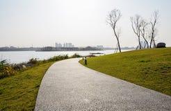 Изгибать путь берега озера в лужайке солнечного после полудня зимы стоковые фотографии rf