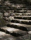 Светлая тропка вверх по стародедовским шагам Стоковая Фотография