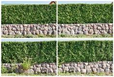 изгородь 4 частей стоковое фото