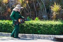 Изгородь утески женщины с машиной триммера Стоковые Изображения RF