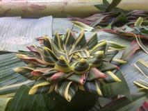 Изготовление Krathong естественных материалов для фестиваля Loy Kratong стоковые изображения rf