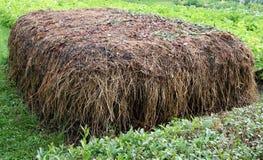 изготовлять компост конюшня позема Стоковое Изображение
