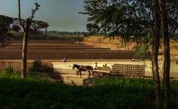 Изготовление кирпичей, Пенджаб, Индия стоковая фотография rf