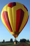 излишек цветка поля воздушного шара горячий Стоковая Фотография