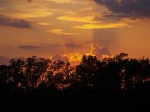излучает заход солнца Стоковые Изображения