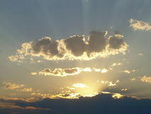 излучает солнечний свет Стоковые Фото