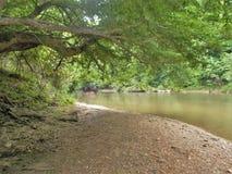 Излучина реки Дэн Стоковая Фотография RF