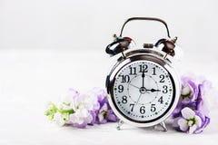 Изменение времени весны Стоковые Изображения