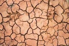Изменение климата, глобальное потепление, крупный план треснуло почву Стоковые Фотографии RF