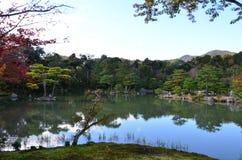 Изменение цвета листьев в Японии Стоковое Фото