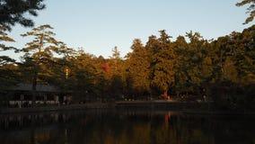 Изменение цвета листьев в Японии Стоковое Изображение