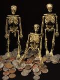 измените скелеты Стоковые Изображения RF