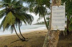 Измерения предохранения от черепахи, Тобаго Стоковая Фотография