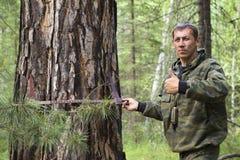 Измерять диаметр дерева Стоковые Фотографии RF