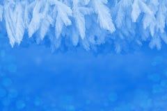 Изморозь зимы как граница или орнамент рамки естественный стоковые изображения