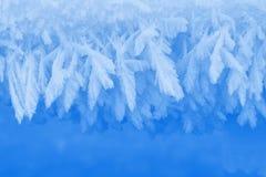 Изморозь зимы как граница или орнамент рамки естественный стоковая фотография rf