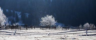 Изморозь покрыла сельский ландшафт стоковые фото