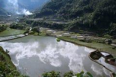 изначальные террасы риса philippines ландшафта Стоковые Фото