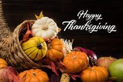 Изобилие благодарения или падения Стоковые Фотографии RF