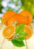 Изображение апельсинов на таблице стоковые изображения rf