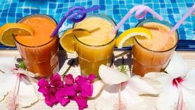 Изображение бассейна, коктеиля плодоовощ и экзотических цветков лето seashells песка рамки принципиальной схемы предпосылки Стоковое Изображение