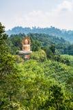 Изображение большого Будды на горе стоковое изображение rf