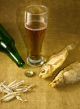 Изображение бутылки, стекла пива и сухих рыб Стоковые Изображения RF