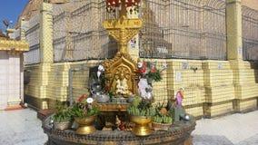 Изображение Будды перед городком ботаники пагоды Стоковые Изображения