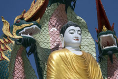 Изображение Будды - Monywa - Myanmar Стоковые Фотографии RF