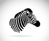 Изображение вектора головы зебры Стоковая Фотография