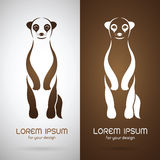 Изображение вектора дизайна meerkats иллюстрация штока
