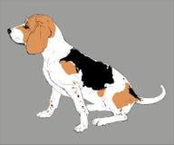 Изображение вектора сидя собаки Стоковые Изображения