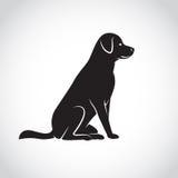 Изображение вектора собаки labrador иллюстрация штока