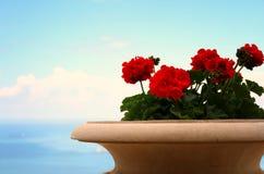 изображение взгляда балкона Марины, старой вазы цветка Стоковое Фото