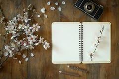 Изображение взгляд сверху дерева вишневых цветов весны белого, открытой пустой тетради, старой камеры на голубом деревянном столе Стоковые Изображения