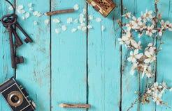 Изображение взгляд сверху дерева вишневых цветов весны белого, старой камеры на голубом деревянном столе Стоковое Изображение