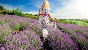 Изображение вид сзади молодой белокурой женщины идя на поле лаванды Стоковые Изображения RF