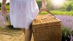 Изображение вид сзади молодой женщины нося большую плетеную корзину для пикника в поле Стоковое Изображение RF