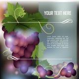 изображение виноградин поля глубины пука темное отмелое иллюстрация вектора