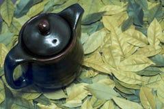 Изображение восточных чайника и чашка на листьях Стоковые Изображения RF