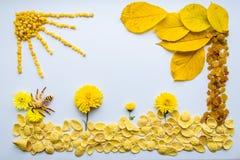 Изображение еды, цветков и листьев на белой предпосылке Стоковая Фотография RF