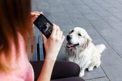 Изображение женщины на стенде фотографируя собаку Стоковое фото RF