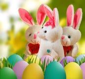 Изображение зайца игрушки и пасхальных яя в крупном плане травы Стоковые Изображения RF