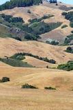 Изображение запаса побережья Калифорнии центрального, большого Sur, США Стоковое фото RF